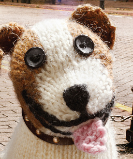 Battersea Dogs Home Knitting Pattern Dog Coat : Battersea Knitted Staffies - CTownsend Design